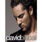 Especial David Bisbal