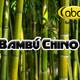 El Ángel de tu Salud - BAMBÚ CHINO1