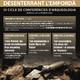 """Conferència """"Lluís Pericot, les arrels torroellenques d'un arqueòleg universal"""""""