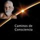 Caminos de Consciencia - Cuarenta versos sobre la realidad - Ramana Maharshi
