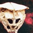 Hallan un cráneo igual que el de Rhodope ¿Es Extraterrestre?