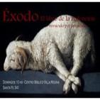 Éxodo 12:14-51 - El Éxodo al fin - EXOS14