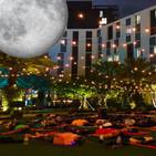 """Full Moon Yoga"" martes 8:00 pm Hotel Hilton West Palm Beach"
