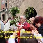 Homilía del Domingo de Ramos