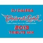 Dj Dalega - Tomorrowland 2013 Tribute Mix