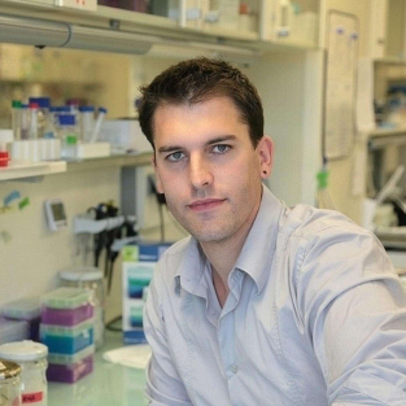 dr david perlmetter salud de la próstata