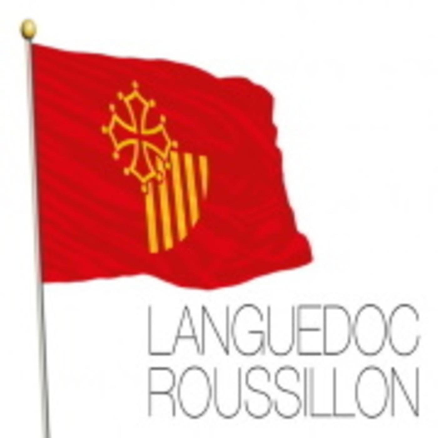 Languedoc, (Cátaros), La Cruzada Albigense