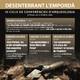 """Conferència """"Les excavacions a Santa Maria del Palau"""""""