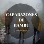 CAPARAZONES DE BAMBÚ - Cristina Trujillo - 15 Febrero 2018 l Prédicas en audio