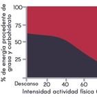 Dieta Cetogénica y Rendimiento Deportivo
