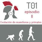 La evolucion de los mamiferos y de los primates