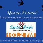 Quina Fauna! Centre Estudis Ètica Animal, Ezequiel Paez; 05-06-16