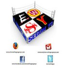 El Podcast de El Wrestling Según Yo - 1x14 - Elimination Chamber 2013