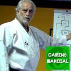 CAMINO MARCIAL nº62 - Andrés Congregado (I Ching)