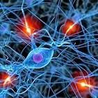 la Celula y la actividad Neuronal