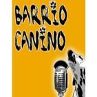 Barrio Canino vol.22 - 20120113 - Entrevista a Alfonso López Rojo: libro RT15M y acampada Barcelona 15M