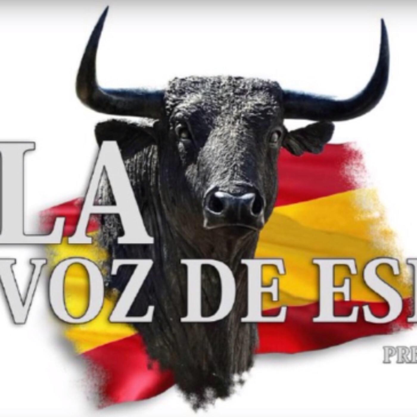 LA VOZ DE ESPAÑA Ed: 230 (17 de Mayo)