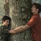 La Cata del Cine - El árbol de la sangre