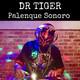 Palenque Sonoro en Conexión con DR TIGER (2/2)