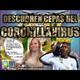 Descubren Cepas del CORONILLAVIRUS - ARTILLERÍA PESADA T1 E01