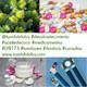 LVB172 rhodiola, aceite de coco, desabastecimiento medicamentos, periodismo, 1haiku saludablemente incorrecto, consultas