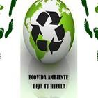Nota Hernan Giardini- Coordinador de la Campaña de Bosques de Greenpeace Argentina- 05-12-19