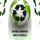 Nota Hernan Giardini- Coordinador de la Campaña de Bosques de Greempeace Argentina- 05-12-19
