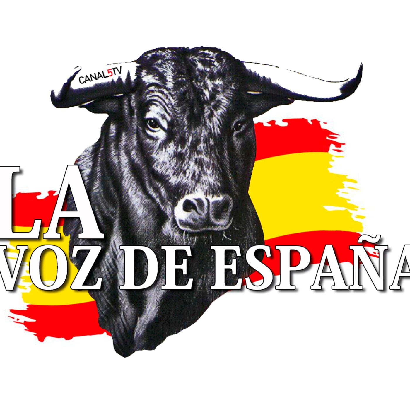 LA VOZ DE ESPAÑA Ed: 276 (13 de Septiembre)