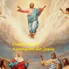 Homilía de la Fiesta de la Ascensión