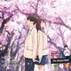 Anitakume (19/04/19) · Kimi no suizo wo tabetai