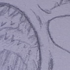 Generación Random 2x63 - Manolo Cabeza de Huevo