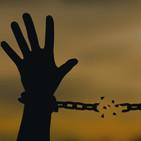 Perlas de Noches Buenas: Nuestras leyes