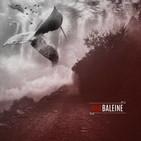 Entrevista en Zaragoza da la Nota a Red Baleine (13-02-2018)