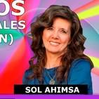 LOS 24 RAYOS O PRINCIPIOS ORIGINALES (ENERGIAS DRAGON) por Sol Ahimsa