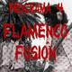 El niño de Carrillo · Prog 4 - Flamenco fusión
