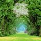GRANDES De La New Age (08): Kevin Kern (En el jardín encantado)