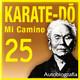 570 | Karate-Do, Mi camino 25x30 (una vida)