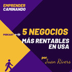Los 5 NEGOCIOS MÁS RENTABLES de Empresarios UNIPERSONALES en USA