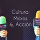 Cultura, micros y acción - programa 134