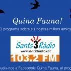 Quina Fauna! David Pumarola; Herpes i contractures. 13-03-16