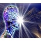 El Abrazo del Oso - La ley de la Atracción y la Psicología Positiva