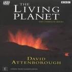 BBC: El Planeta Vivo 4.- La jungla