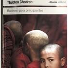 Budismo principiantes - rezos, rituales y dedicaciones