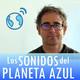 Los Sonidos del Planeta Azul 2424 - Entrevista a AMPARANOIA · CD 'El coro de mi gente' (18/04/2017)