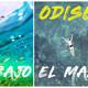 Odisea bajo el mar, una relajación y visualización guiada para descubrir tu poder y belleza interior