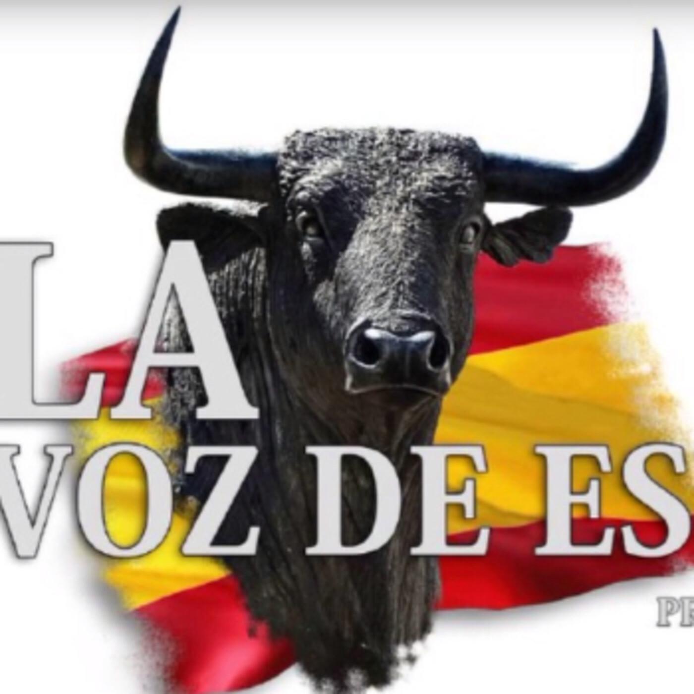 LA VOZ DE ESPAÑA Ed: 229 (14 de Mayo)