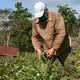 Agricultores espirituanos responden ante nuevo coronavirus
