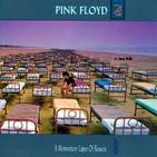 Dossier TiR nº 122, 2020-02-23, Pink Floyd - A Momentary Lapse Of Reason