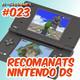 r-channel 023 – Recomanats Nintendo DS