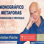 MONOGRÁFICO METAFORAS - Introducción y Protocolo por Cristian Flèche